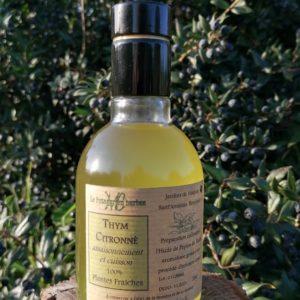 huile Thym citronné